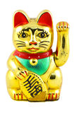 Gold Maneki Neko Japan Lucky Cat. Isolated with Clipping path royalty free stock photos