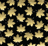 Gold maple fall tree leaf seamless pattern Royalty Free Stock Photo