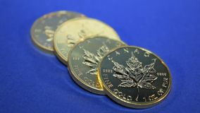 Gold Maple Leaf, Row of Full Ounce Bullion Coins stock video footage