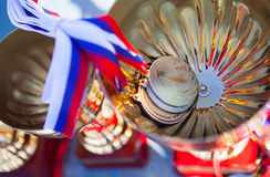 Gold medal of Russia Royalty Free Stock Images