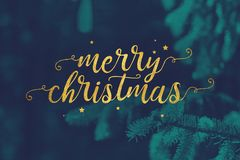Merry Christmas Script with Evergreen Branches Background royalty free stock photo