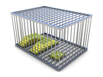 Gold in metal cage on white background. Royalty Free Stock Photo