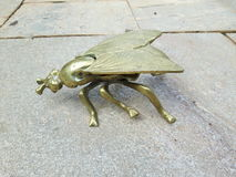 Gold Metal Fly. It is one of the most common insects and a habitual presence in most climates of the Earth Stock Photos