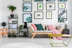 Gold metal table standing in white living room interior with bla. Ck metal racks, fresh green plants, light grey sofa with cushions and pink blanket and posters Stock Photo