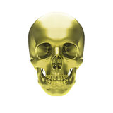 Gold metallic skull Stock Photography