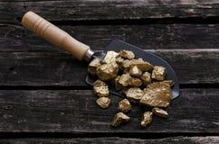 Gold mine. Gold miner. Golden ore in a shovel. Gold ore nuggets in shovel on old adventurer table. Goldminer Treasure hunter concept stock images