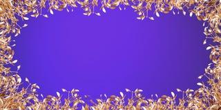 Gold mistletoe Royalty Free Stock Image