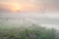 Gold misty sunrise over Dutch farmland with windmill Stock Images