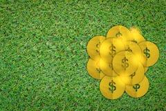 Gold money coin on grass floor.jpg Stock Image