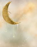 Gold moon Royalty Free Stock Images