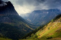 Gold on The Mountain Slopes. Valley shrouded with color in the fall splendor at Glacier National Park, Montana Stock Image