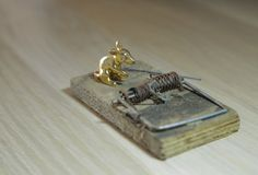 The gold mouse and mousetrap Royalty Free Stock Photography