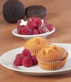 Gold muffins with raspberries Stock Photography