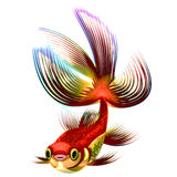 Gold and multi-coloured small fish Royalty Free Stock Images