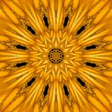 Gold mythical kaleidoscope in form of gold sun mandala, geometric fractal royalty free stock photos