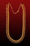 Gold neck-less. Jewellery . showing details of the workmanship stock image