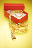 Gold necklace and gift box Stock Photos