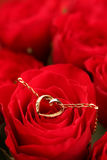 Gold necklace with heart on rose Royalty Free Stock Photo