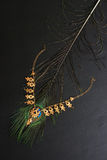 Gold necklace on peacock feather. Black background. Royalty Free Stock Image