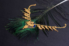 Gold necklace on peacock feather. Black background. Royalty Free Stock Photography