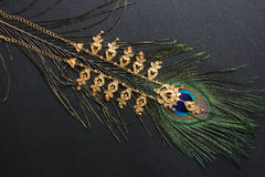 Gold necklace on peacock feather. Black background. Royalty Free Stock Images