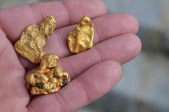 Gold nuggets from the goldfields of Australia. Big gold nugget from the goldfields of Australia,in a man`s hand stock image