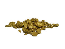 Gold Nuggets. Natural authentic gold nuggets from Western Australia. Isolated on white, concept for gold, treasure, wealth, prospecting and more stock image