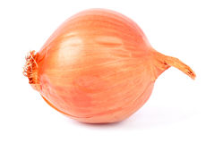 Gold onions Stock Images