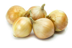 Gold onions isolated on white background Stock Images