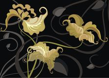Gold orchids Stock Images