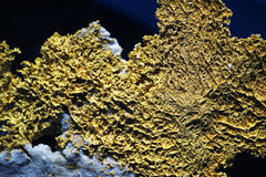 Gold ore Royalty Free Stock Images
