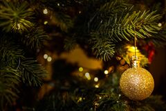 Gold ornament on Christmas tree royalty free stock image