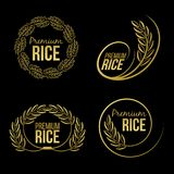 Gold paddy rice premium organic natural product banner logo on black background vector design Stock Images
