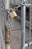 Gold Padlock on Chainlink Fence Royalty Free Stock Photo
