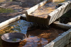 Gold panning for gold Stock Photo