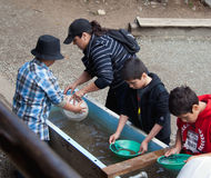Gold panning Stock Image