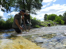 Gold panning in France Royalty Free Stock Image