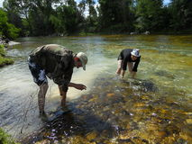 Gold panning in France Royalty Free Stock Images