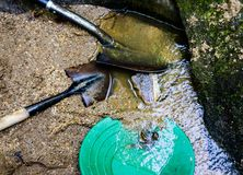 Gold panning and gem mining Stock Images