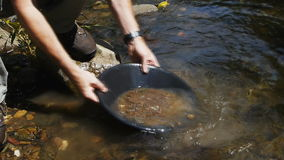 Gold panning. Removing large stones and debris during gold panning stock video