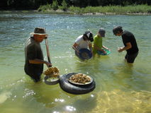 Gold panning Royalty Free Stock Photo