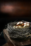 Gold Pension Nest Royalty Free Stock Photography