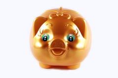 Gold pig Stock Photo