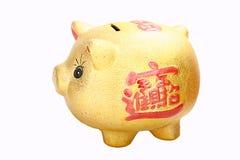 Gold pig. Money box isolated on white Royalty Free Stock Image