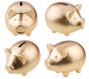 Gold pig as a money-box Stock Photography