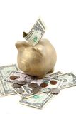 Gold pig bank and dollars Royalty Free Stock Photo