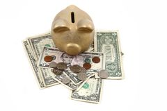 Gold pig bank and dollars Stock Photo