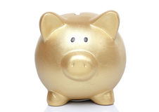 Gold Pig Bank Stock Photography