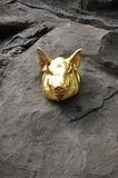 Gold Pigs Head Stock Photos