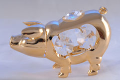 Gold piggy Stock Photos